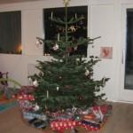 Juletræet med sin pynt.......
